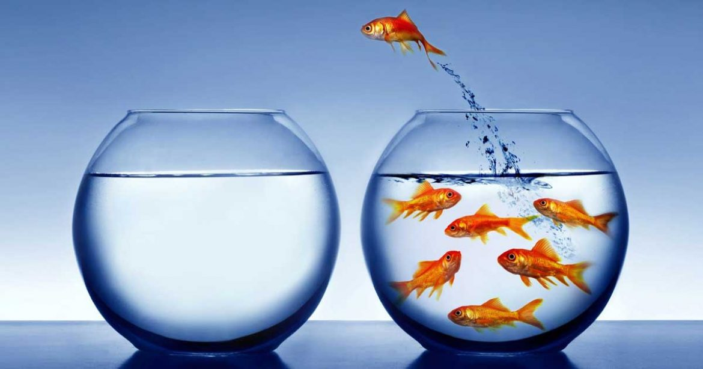Saiba como evitar a perda de clientes, o que acarreta em queda no faturamento e gastos para a conquista de novos cientes.